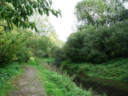 The River Lark
