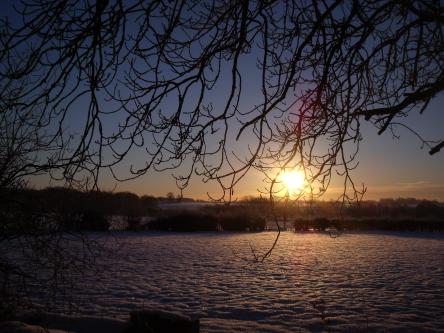 December Dawning