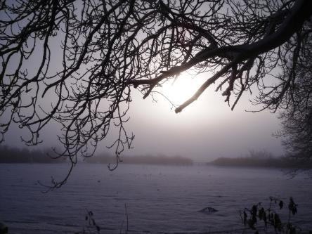 November Mists