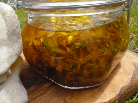 This infused oil has been steeping for about four days.  I've just added a load more flowers, which should start making the colour of it darken down towards garnet instead of lightly colouring it.  I estimate maybe two days of full on sunshine to do the job, longer if the month carries on being as rainy as it has been!