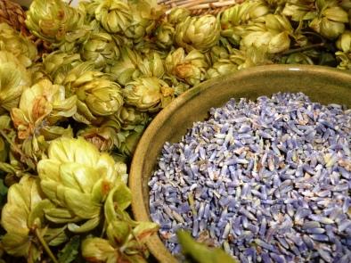 lavenderhops