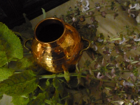 First, I stripped the clary sage leaves and flowers from the stem and packed them into the pot...
