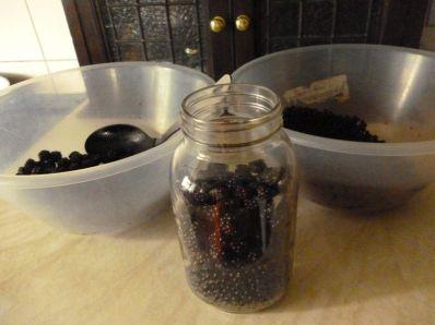 Elderberries and Blackberries packed in a jar, awaiting honey and brandy...