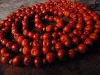 Making Rowan Berry Garlands & Charms