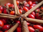 Rosehip Recipes for Incoming Winter